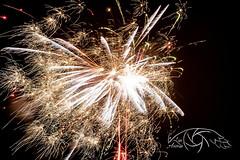 Funplosion (Lux Animae) Tags: firework new year night