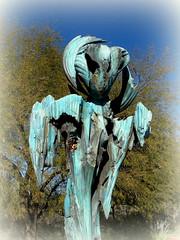 """St. Earth"" – Desert Botanical Garden, Papago Park, Phoenix, Arizona (2) (milomingo) Tags: outdoor dbg desertbotanicalgarden phoenix arizona southwest desert arid garden park statue art bronze stearth statuary gardenart walkingfigure robertwick texture blue patina verdigris"