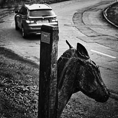 horse power (Mallybee) Tags: bob horse carving roadside bmw bw blackwhite road mallybee apsc fuji fujifilm xa1 35mm f28 mamualfocus adapted oldlens prime lincolnshire town caistor optomax