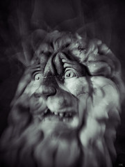 scared lion (*altglas*) Tags: scared lion frightened dark night statue bruxelles brussels modifiedlens xraylens rodenstock heligon flou monochrome