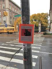 Cat reward 3 (Mr Flikker) Tags: lostcat lostpet reward columbiauniversity broadway sign pole newyork