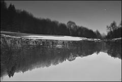 The Upside Down (vincentciv) Tags: nb bw upside down landscape noiretblanc blackwhite lac lake