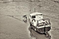 Boat (nigel@hornchurch) Tags: looe england unitedkingdom dsc0078