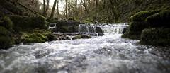 Rocks (mexou) Tags: wood forest mexou water creek beck luxembourg kelsbaach machtum