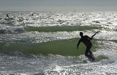 (Rob Millenaar) Tags: southafrica bloubergstrand kitesurfing light people dolphinbeach