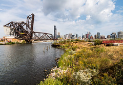 Chicago RIver DSC03523 (nianci pan) Tags: chicago illinois urban city cityscape architecture buildings river chicagoriver urbanlandscape landscape sony sonya7rii nianci pan