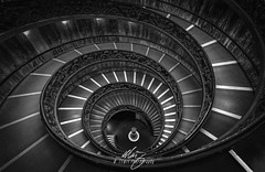 Vatican Black Stair (Themightyoak) Tags: vatican city italy italia rome pop stairs circular spiral monochrome historic history step steps statue fisheye drama mood glow blue green amber canon stair holy religion travel tourism
