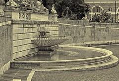 Fontana Della Dea Roma particolare (Michele Monteleone) Tags: roma piazze fontana acqua muro pietra albero 2016 canon 5dmarkiii persone strada