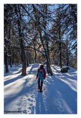 Vers l'inconnu et au-delà... (jamesreed68) Tags: valais froid snow cold hiver winter suisse schweiz swiss switzerland nature paysage alpes alps