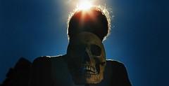 Laissez bronzer les cadavres / Let the Corpses Tan