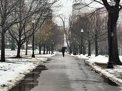 Boston - Common Walk! (Polterguy40) Tags: umbrella walking raining rain winterwonderland winter snow bostoncommon massachusetts boston random