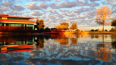 The Coloring Pages (VGPhotoz) Tags: vgphotoz olympus em1markii m1442mm f3556 ƒ50 140 mm 1125 200 march 2019 reflections water artisticphotography arizona park coloringbook clouds sky colors glendale az peoria borderline buildings trees funpics photo image picture poza photographer photography parksandrecreation patterns parc day funactivities waterdance apa couleurs purple blue orange yellow red green white pastels metal hues pretty usa america northernhemisphere visitors tourism veteransmemorial even mirrorimage exploreaz explorearizona ilovearizona arizonacolors desertoasis desertbeauty skittles pastelcolors fugitive fantastic americanwest southwest yahoo flickr