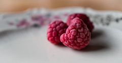 raspberries, frozen (marinachi) Tags: macromondays hotorcold raspberries pink food healthy white frozen cof059mari cof059ally cof059evim cof059chri cof059dmnq