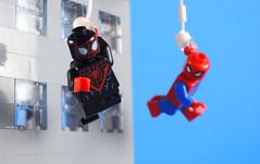 Spider-Men (-Metarix-) Tags: lego spiderman super hero minifig miles morales peter parker ultimate comics comic spiderverse