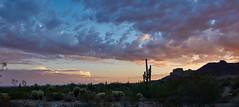 DSC00603_stitch2 (wNG555) Tags: 2014 arizona phoenix apachejunction apachetrail superstitionmountain sunset a6000 ilce6000 fav25