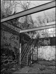urban landscape, remnants, abandoned warehouse, graffiti, staircase, beams, River District, Ashevile, North Carolina, Mamiya 645 Pro, mamiya sekor 45mm f-2.8, Bergger Pancro 400, Ilford Ilfosol 3 developer, 1.5.19 (steve aimone) Tags: urban urbanlandscape urbandecay beams staircase graffiti riverdistrict asheville northcarolina mamiya645pro mamiyasekkor45mmf28 mamiyaprime primelens 120 120film film mediumformat monochrome monochromatic blackandwhite 645