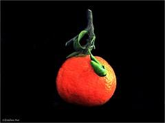 (Esteban OF) Tags: nature fruit fruta orange mandarina food olympus color natural