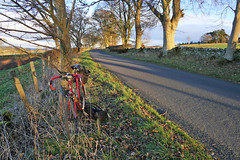 My Bike (eric robb niven) Tags: ericrobbniven scotland dundee cycling road angus winter