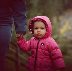 Truckee // California (bior) Tags: hasselblad500cm portra160nc portra hasselblad 6x6cm mediumformat 120 expiredfilm square child portrait