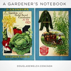 Historical Seed Catalogs: Alexander's Garden And Field Seed Catalogue (1921) – 19 In A Series DouglasEWelch/agn #garden #gardening #history #historical #seeds #catalog @internetarchive (dewelch) Tags: ifttt instagram historical seed catalogs alexander's garden and field catalogue 1921 – 19 in a series douglasewelchagn gardening history seeds catalog internetarchive