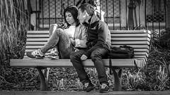 Couple on a bench in Nice, France 12/2 2014. (photoola) Tags: nice promenadedupaillon bänk sv bench photoola monochrome blackandwhite