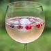 Fruity Gin Tonic