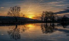 Sonnenuntergang an der Ruhr (MSR-Photoarts) Tags: ruhr nrw deutschland fluss spiegelung reflection river tree trees sunset sunrise