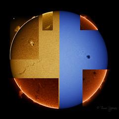 Our sun: H-alpha and CaK collage (Tommi R) Tags: sun sunspot solar halpha cak filament protuberance