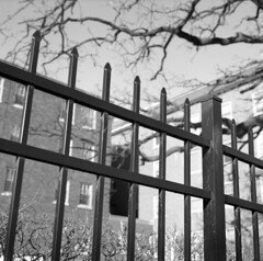 institutionalized-No1 (kaumpphoto) Tags: rolleiflex 120 tlr ilford bw black white street urban city fence tree building wall minneapolis