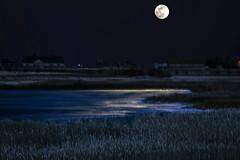 Super Moon over Alkali Marsh (wyojones) Tags: wyoming cody alkalilake aquaticplants alkaliswamp habitat wetlands marsh lake water frozen ice icecovered suoermoon moon march20 2019 moonlight reflections barn trees night winter