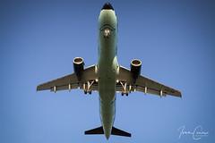 Airbus A320-214 – Brussels Airlines – OO-SNB – Brussels Airport (BRU EBBR) – 2019 02 26 – Landing RWY 25L – 04 – Copyright © 2019 Ivan Coninx (Ivan Coninx Photography) Tags: ivanconinx ivanconinxphotography photography aviationphotography brusselsairport bru ebbr airbus airbusa320 airbusa320214 a320 a320214 brusselsairlines oosnb aviation moulinsart rackham snrackham tintin herge landing
