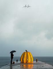 Yayoi Kusama's Yellow Pumpkin (Naoshima Island, Japan 2015) (Alex Stoen) Tags: 500px alexstoen alexstoenphotography art benessehouse canoneos1dx ef2470mmf28liiusm ericstoen flickr geotagged google japan ngexpeditions naoshima natgeo nationalgeographicexpeditions sculpture travel vacation facebook