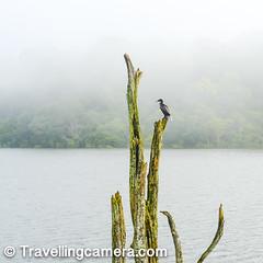 DSC_0477 (VJ's Travelling Camera) Tags: destinations homestays hotels photojourney photography resorts reviews tipstricks topindiandestinations tourism travel travellingcamera vjsharma
