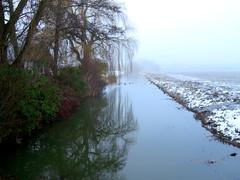 's Heerenhoek (Omroep Zeeland) Tags: mist en sneeuw bij de sloot