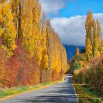 Speargrass Flats Road (near Arrowtown, New Zealand) thumbnail