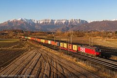 Riacchiappato (Daniele Sudati) Tags: öbb tricesimo tricesimosanpelagio friuliveneziagiulia rca österreichischebundesbahnen 193 1293 tc vectron