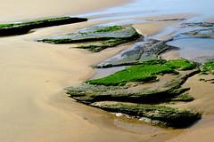 Beachrocks I (__ PeterCH51 __) Tags: beach rocks beachrocks nature wilderness wildernessbeach gardenroute westerncape southafrica za sand sandy sandybeach lowtide seashore peterch51 naturalshapes