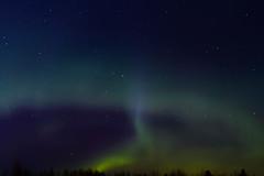 IMG_8125 (Contact: krista.rosenlof@gmail.com (Fin, Eng)) Tags: revontuli revontulet aurora northernlights northern lights starts nightsky sky night goodnight