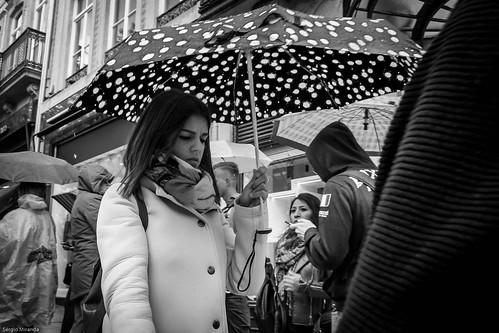 Umbrella / Guarda-chuva (7)