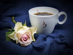 Kaffee und Rose (ingrid eulenfan) Tags: 2019 kaffeepause pausecafé coffebreak 365project kaffee espresso cappuccino cup coffeepot tasse coffee coffeetogo rose blume flower stillleben stilllife