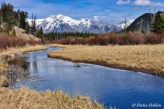 Am Bow River (pohlenthe49er) Tags: banff kanada alberta bowriver rockymountains berge