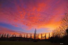 Stasera, che sera.... (stefano.chiarato) Tags: sera crepuscolo twilight colori cielo sky paesaggio panorami landscape pentax pentaxk70 pentaxlife pentaxflickraward sunset tramonto