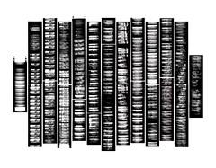 LOMOKINO-FILM-STRIP-PRINT-1555ss (kycamlewis) Tags: pinhole ilfordfilm filmstrips pinholelomokino homemadepinhole moddedlomokino analogue shadows sun slowphotography longexposures stopframe allotment southlondon