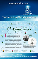 True Meaning Of Christmas Tree (dxyhnuyl699) Tags: true meaning of christmas tree