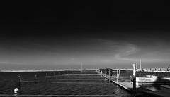 lines (liebeslakritze) Tags: lines leinen hafen yachthafen sky clouds bw blackwhite schwarzweis monochrome ostsee seaside balticsea harbour