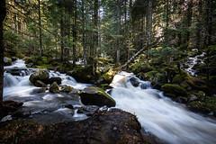 Vallée chorsin (mick42m) Tags: tokina waterfall cascade canon 1116 torrent water longexposure nature