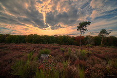 Cloudrift. (Alex-de-Haas) Tags: 11mm adobe adobelightroom aurorahdr aurorahdr2019 blackstone d850 dutch europa europe european hdr holland irix irix11mm irixblackstone lightroom limburg molenhoek mook mookerheide nederland nederlands netherlands nikon nikond850 skylum autumn beautiful beauty bomen boom bos cirrus cloud clouds colorful colourful fall forest heide herfst landscape landschaft landschap mooi nature natuur park pretty schoonheid sky skyscape sundown sunset tree trees warm wolk wolken woods zonsondergang