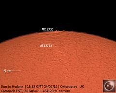Sun in H-alpha (1) 24th March 2019 (Mary McIntyre FRAS) Tags: suninhalpha coronadopst asi120mc zwo sun prominences
