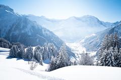 never look back (gato-gato-gato) Tags: apsc alpen berge europa fuji fujifilmx100f glarus glarussüd matt schnee schneehschuhwandern schweiz snowshoeing switzerland weissenberge winter x100f autofocus flickr gatogatogato pointandshoot snowshoehiking wwwgatogatogatoch mensch person human pedestrian fussgänger fusgänger passant suisse svizzera sviss zwitserland isviçre fujifilm fujix x100 x100p digital landschaft landscape landscapephotography outdoorphotography mountains mountain gebirge fels stein stone rock