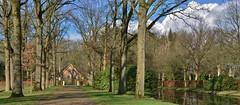 Landgoed 'De Eese' - Steenwijk (henkmulder887) Tags: landgoeddeeese deeese kopvanoverijssel steenwijk landgoed vankarnenbeek natuur nature natura holland thenetherlands natura2000 boom bomen